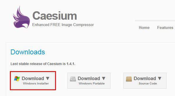 Caesiumインストール版をダウンロード