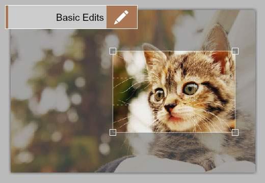 Basic Edits:画像サイズ・色調整