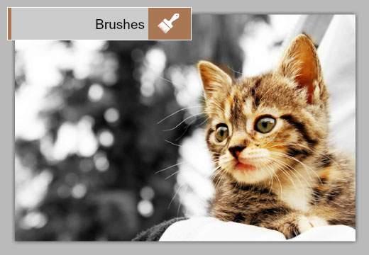 Brushes:マウスでなぞって効果をつける