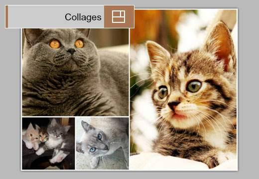 Collages:画像をアルバム風にレイアウト