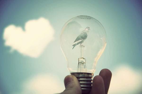 dreamy bulb