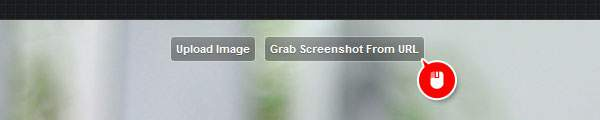 「Grab Screenshot From URL」をクリック