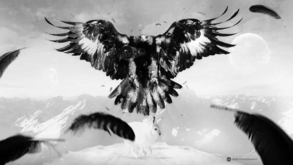 羽を広げたワシ