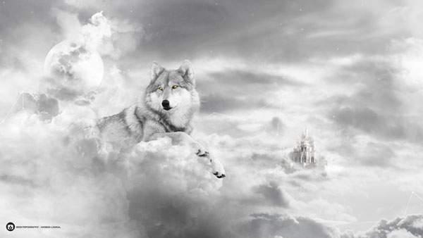 雲と狼のモノクロ画像