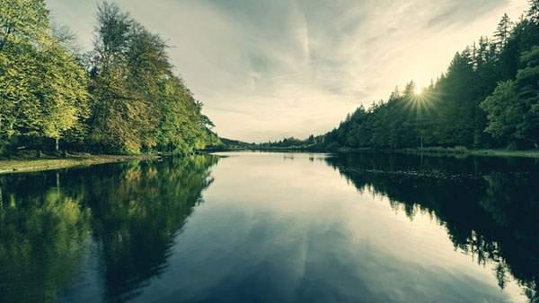 湖と森の木から覗く太陽