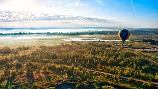 気球と大空と森