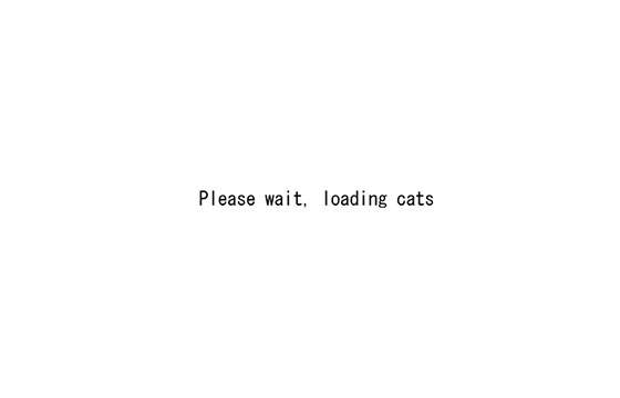 「Please wait, loading cats」と表示される