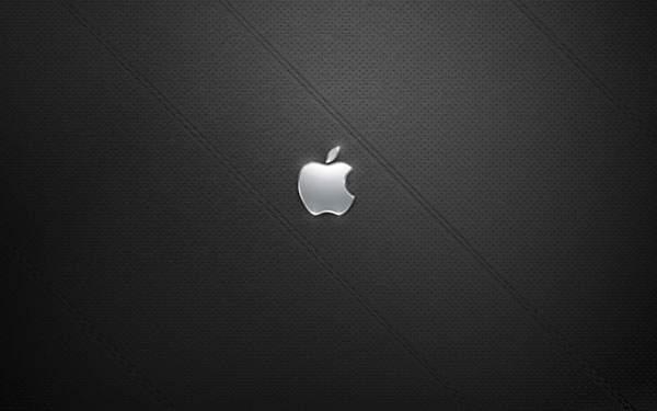 高級感のあるレザーの質感とアップルロゴ