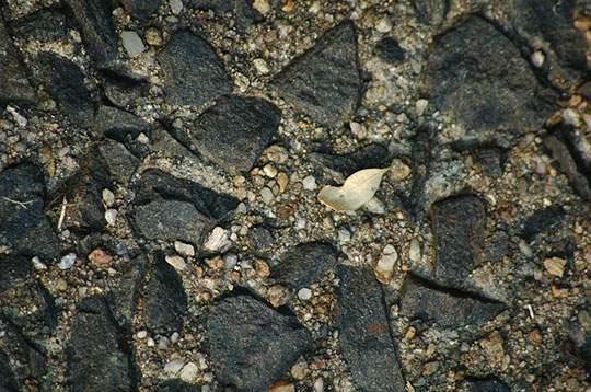 石・岩のテクスチャー