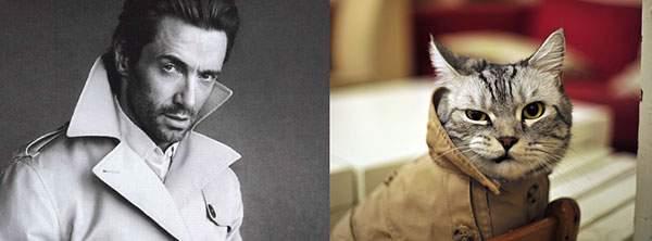コートの襟を立ててニヒルな笑顔のイケメン猫
