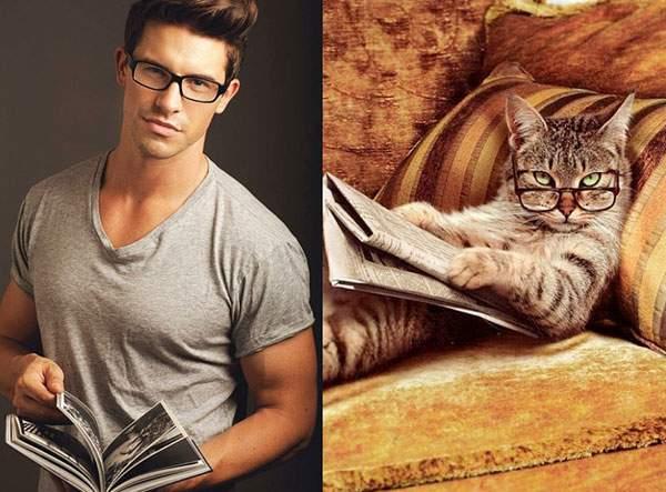 黒縁メガネで本を読む知的イケメン猫