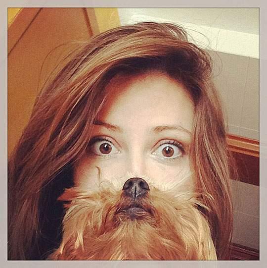 Dog Beards - 01