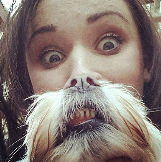 Dog Beards - 04
