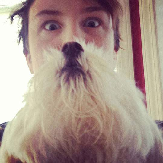 Dog Beards - 08