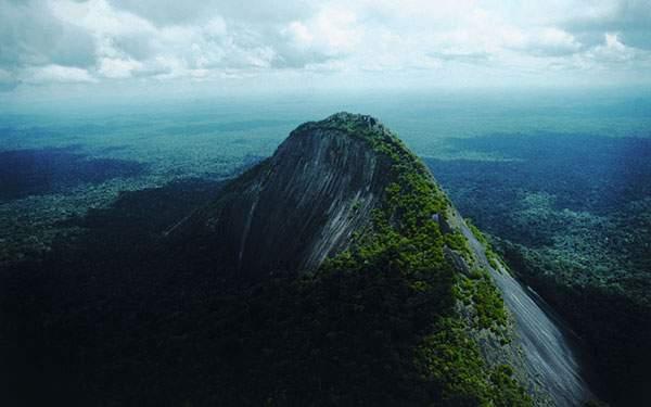 緑が生い茂る美しい山の高画質壁紙