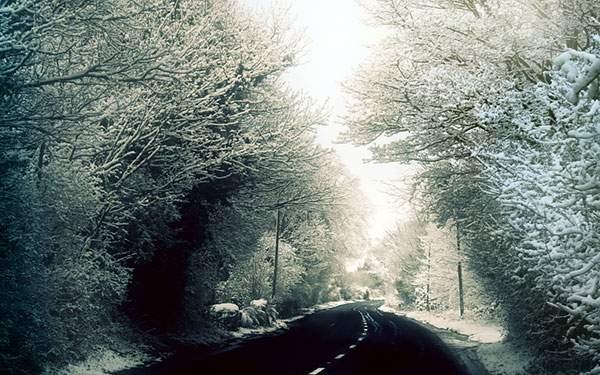 冬の雪道を撮影した写真の壁紙画像