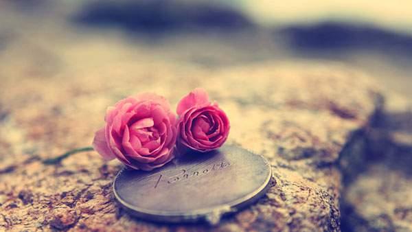 レトロな色調の二輪の薔薇の花