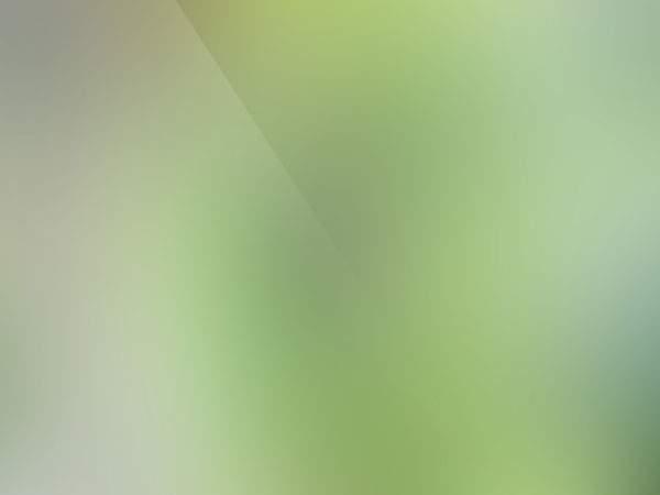 ボケ&光沢感が美しい背景用テクスチャー素材 - 02