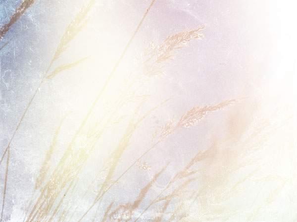 夏の終わりをイメージしたノスタルジックなグランジ系テクスチャー - 04