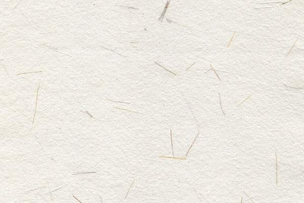 High Resolution Paper Background Texture
