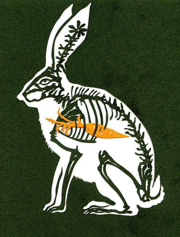 ウサギとニンジン