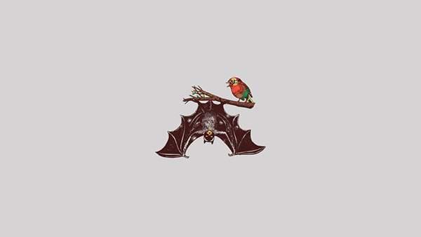 リアルコウモリと取りなバットマンとロビン