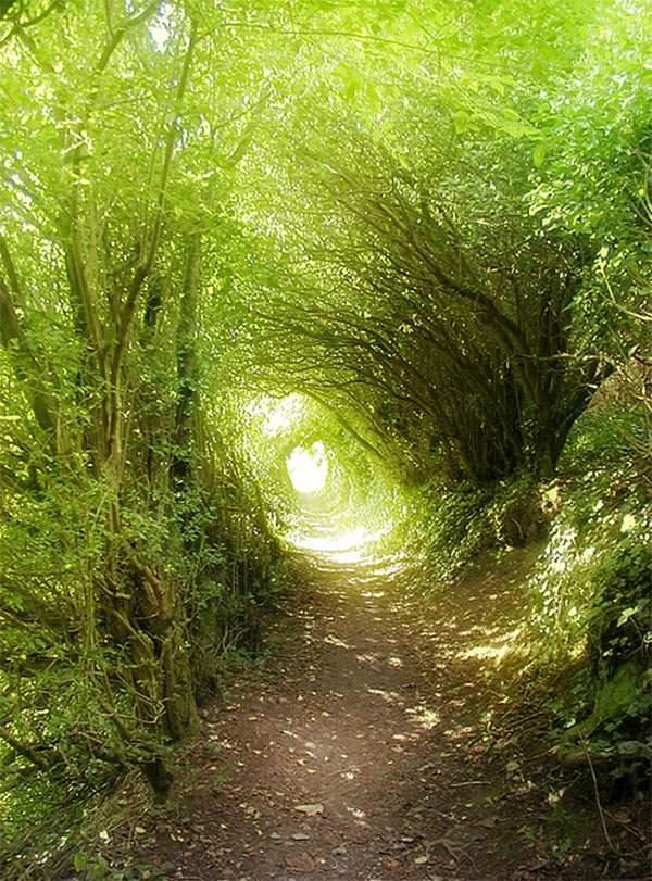 世界の壮大なトンネルの写真いろいろ - 09
