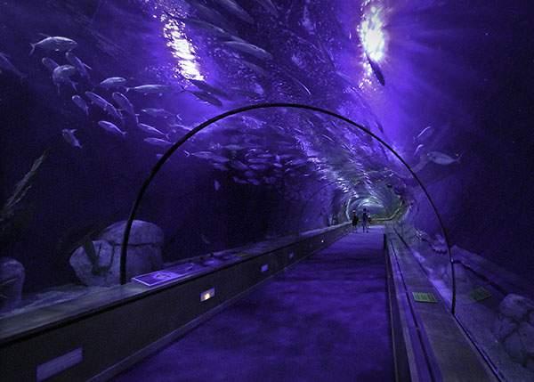 世界の壮大なトンネルの写真いろいろ - 10
