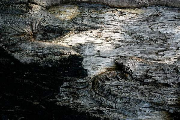 Shadow wood texture