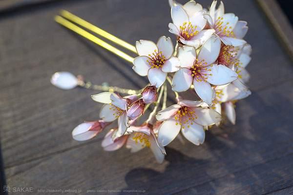 桜 簪【 明けの桜 】