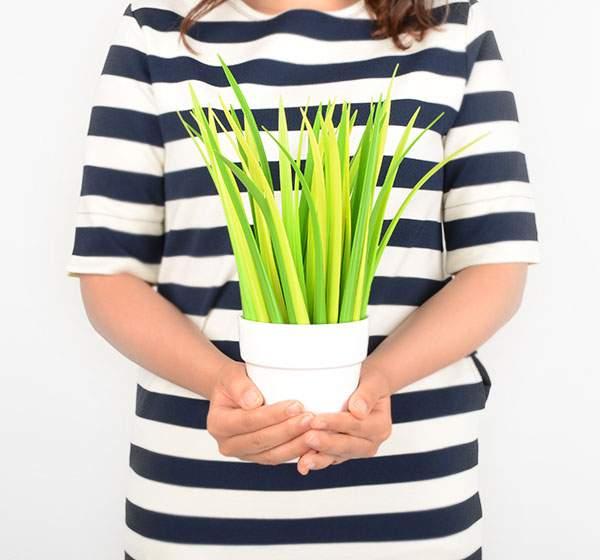 これちょっと欲しいかも!観葉植物風デザインのペン立てと草のペン - 01