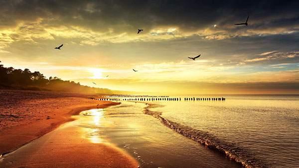 真っ赤な夕日と砂浜とかもめの写真画像