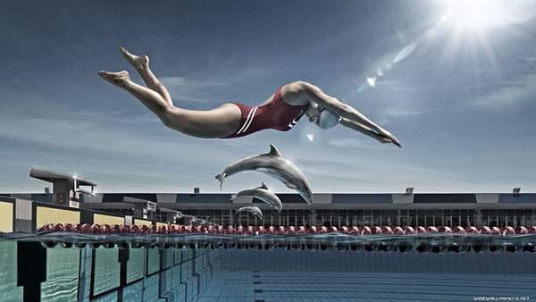 プールに勢いよく飛び込む競泳選手とイルカ