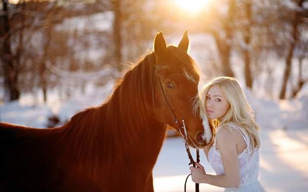 雪と馬と女性を夕日の中で撮影した写真壁紙画像