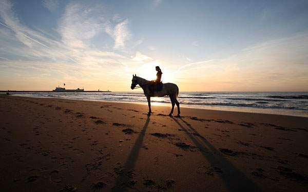 夕日を受けて海辺に浮かび上がる馬に乗った女の子のシルエット
