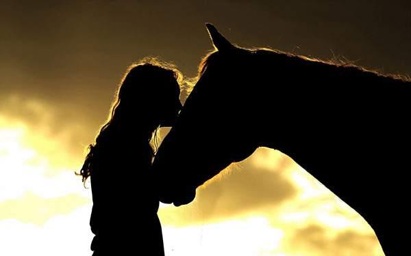 馬にキスする女性のシルエットの美しい写真壁紙画像