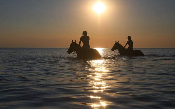 馬に乗って海を渡る女性たちのシルエットの写真壁紙