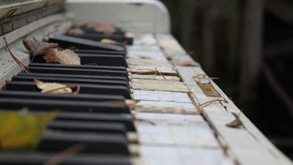 落ち葉ののった古びたピアノの写真壁紙