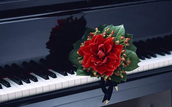 ピアノと赤い花のおしゃれな写真壁紙画像