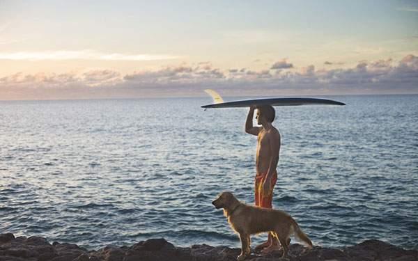 サーフボードを頭に乗せて犬と浜辺を散歩する男性の壁紙画像