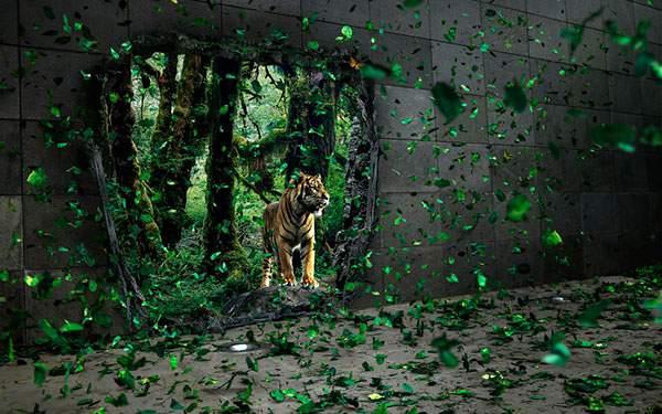 穴の空いたコンクリートの壁と森と虎