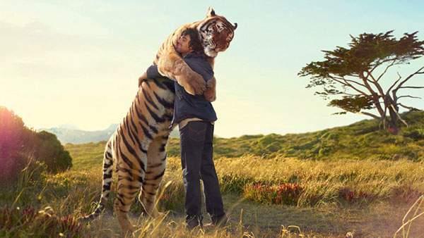 虎と仲良く抱き合う男性の感動的な写真壁紙