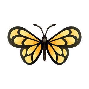 バタフライ/チョウ/ちょうちょ/蝶のイラスト素材