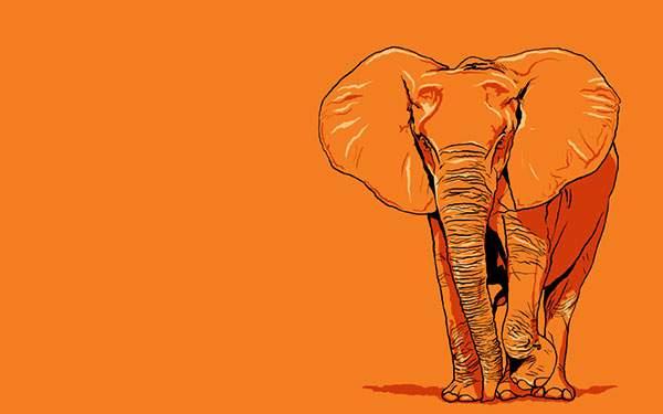 オレンジなインパクトたっぷりな象のイラストの壁紙画像