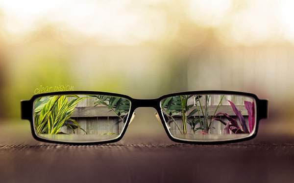 メガネ越しに庭の植物を撮影した綺麗なボケの写真壁紙