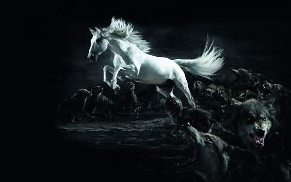 狼の群れの中を駆け抜ける白馬のかっこいいイラスト壁紙画像