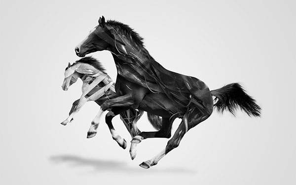 二匹の馬を描いたイラストのグラフィックデザイン系壁紙