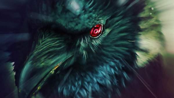赤い目をしたカラスをアップで描いたかっこいいイラスト壁紙