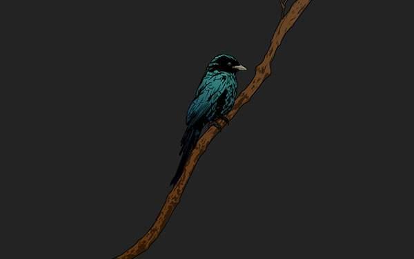 木の枝にとまったカラスを描いたシンプルでかっこいい壁紙画像