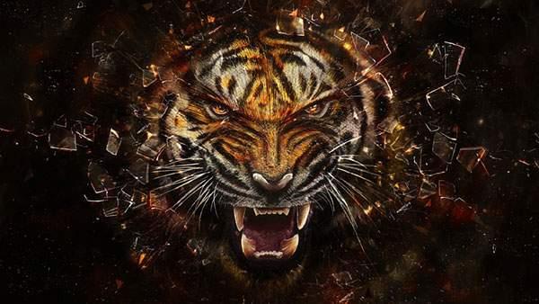 虎の顔のアップを描いた迫力満点のイラスト壁紙画像